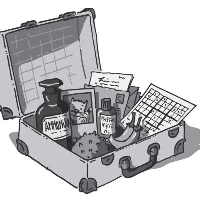 Kofferillustrauion - Das innere Gleichgewicht finden - Psychiatrie Verlag