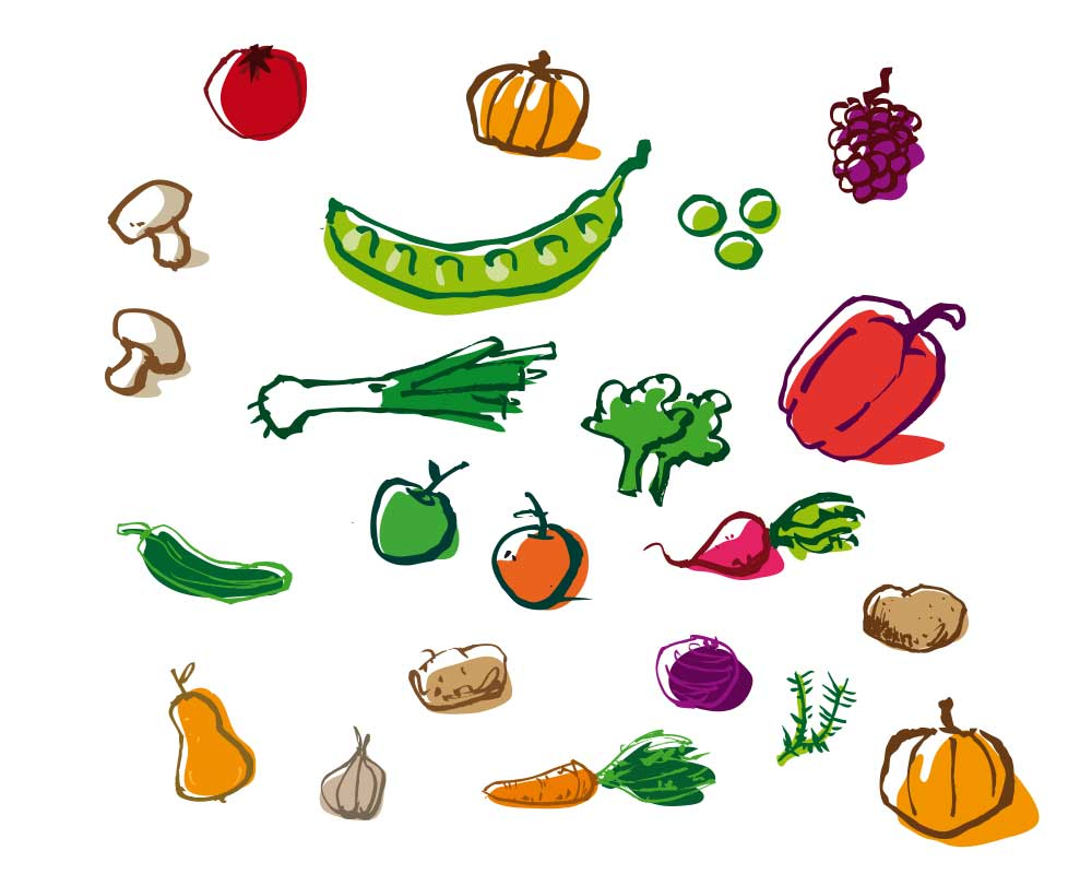 Gärtnerinnenblog Gemüse
