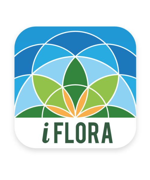 iFlora Icon