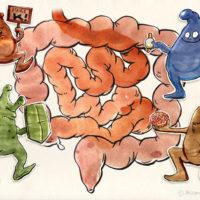 mikrobiom1